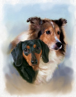 Two dogs a collie and dachsund Pet Portrait in painterly style by Jax Custom Photography